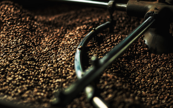 MORIKAWA COFFEEのおいしさへの3つの条件